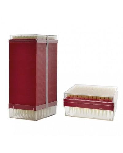 Antgaliai - 100 - 1000 µl (dėžutėse)